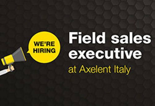 Field sales executive
